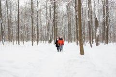 Un couple affectueux marchant en parc d'hiver Chute de neige, hiver Photos libres de droits