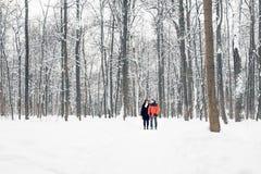 Un couple affectueux marchant en parc d'hiver Chute de neige, hiver Images libres de droits