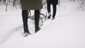 Un couple affectueux marche dans les bois avec des traîneaux clips vidéos