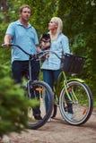Un couple attrayant d'une femelle et d'un homme blonds s'est habillé dans des vêtements sport sur un tour de bicyclette avec leur Photographie stock