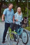 Un couple attrayant d'une femelle et d'un homme blonds s'est habillé dans des vêtements sport sur un tour de bicyclette avec leur Images libres de droits