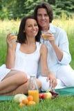 Couples ayant un pique-nique Photographie stock libre de droits