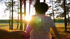 Un couple fonctionne pendant le coucher du soleil Une femme tient un homme par la main et les avances par la forêt au coucher du  clips vidéos