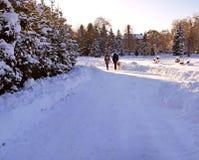 Un couple marchant avec son chien en parc en hiver photographie stock libre de droits