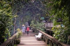 Un couple marche au-dessus d'un pont en bois dans Ubud, Bali Photographie stock libre de droits