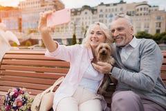 Un couple plus âgé marche dans la place avec son petit chien Ils font un selfie avec un chien photographie stock