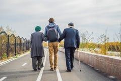 Un couple plus âgé marche en parc avec un petit-fils auxiliaire ou adulte masculin S'occupant des personnes âgées, offrant images libres de droits