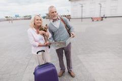 Un couple plus âgé marche le long du remblai avec leur petit chien Ils vont porter un sac pourpre de voyage Photo libre de droits
