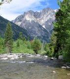 Un courant du Wyoming Images stock