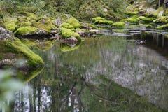 Un courant traversant des roches couvertes de la mousse photo stock