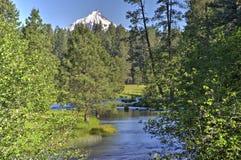 Un courant traversant une forêt de pin avec la neige a couvert la montagne Photographie stock