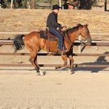 Un cowboy che esegue su un cavallo I Immagine Stock Libera da Diritti