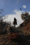 Un cowboy che monta il suo cavallo su una collina. Immagini Stock Libere da Diritti