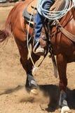 Un cowboy che monta un cavallo Immagine Stock