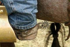 Un cowboy lavorante fotografie stock libere da diritti