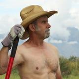 Un cowboy senza camicia Pauses While Working sul ranch Immagini Stock Libere da Diritti