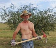 Un cowboy senza camicia Uses un piccone rosso Fotografia Stock Libera da Diritti