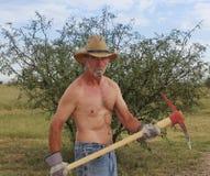 Un cowboy senza camicia Uses un piccone rosso Immagini Stock