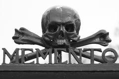 Un cráneo en un cementerio Foto de archivo libre de regalías