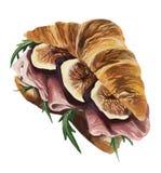 Un croissant francese con il prosciutto, i fichi e il ruccola Immagini Stock Libere da Diritti