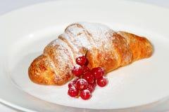 Croissant con i mirtilli e lo zucchero Immagine Stock