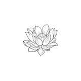 Un croquis d'un beau lotus sur un fond blanc images libres de droits