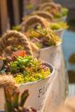 Un cubo de flores Fotografía de archivo libre de regalías
