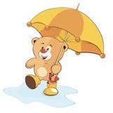 Un cucciolo di orso e un ombrello Immagini Stock Libere da Diritti