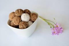 Un cuenco blanco con un surtido de chocolates de la trufa, bolas del ron Imagen de archivo libre de regalías
