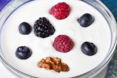 Un cuenco de yogur con las zarzamoras y las nueces de los redcurrants de los arándanos imagen de archivo