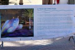 Un cuento de la muestra de dos pescados Imágenes de archivo libres de regalías