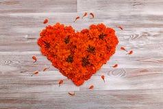 Un cuore, allineato con i fiori del tagete Fotografie Stock Libere da Diritti