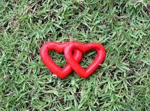 Un cuore di due rossi sull'erba Immagine Stock