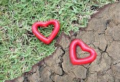 Un cuore di due rossi sull'erba e sulla terra arida Fotografia Stock Libera da Diritti