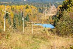 Un cutline del poder que corre a través de un bosque del otoño Fotografía de archivo libre de regalías