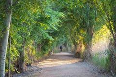 Un cycliste au fond du chemin, Lérida photos stock