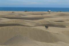Un désert par la mer photographie stock libre de droits