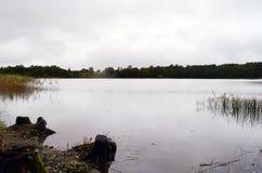 Un día brumoso del otoño en el lago Pobledzie y x28; Zollteich, Pablindzersee& x29; Fotos de archivo libres de regalías