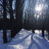 Un día de invierno imagen de archivo libre de regalías