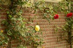 Un día de primavera hermoso a un parque hermoso en Nederland fotografía de archivo