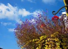 Un día del cielo azul de Itrish Foto de archivo libre de regalías