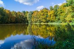 Un día del otoño cerca de la charca del bosque imagenes de archivo