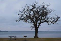 Un día en el lago Imagen de archivo libre de regalías