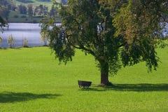 Un día en el país Imagen de archivo