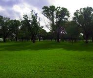 Un día en el parque Foto de archivo