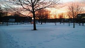 Un día hermoso en Suecia Foto de archivo libre de regalías