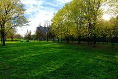 Un día soleado en un parque de Moscú en primavera Foto de archivo