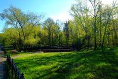 Un día soleado en un parque de Moscú en primavera Fotos de archivo libres de regalías