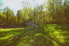 Un día soleado en un parque de Moscú en primavera Imágenes de archivo libres de regalías