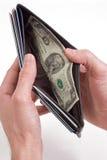 Un dólar de los pares Imagen de archivo libre de regalías